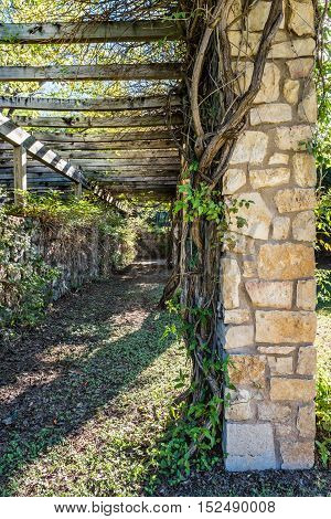 Arbor covered pathway with vines along the top and the stone columns at the corners.