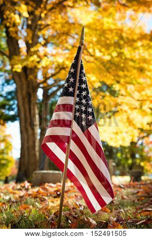 American veteran flag against an autumn tree in cemetery