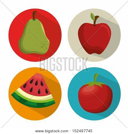collection fresh apple tomato watermelon and pear vector illustration eps 10