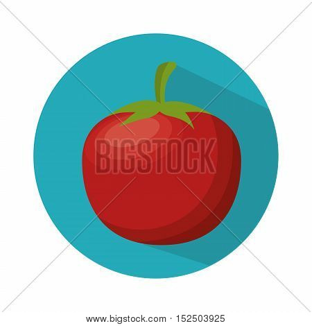 ripe tomato nutrition healthy food vector illustration eps 10