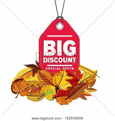Autumn seasonal sale badge, vector illustration. Big discount, special offer label on white background with colorful autumn leaves. Red price tag with white text. Autumnal discount.