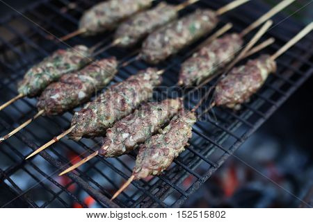 Cooking meat on the fire and kebabs on skewers on the grill