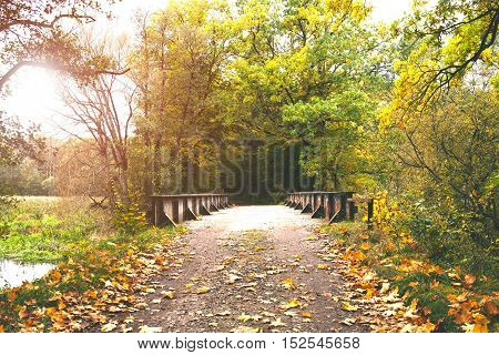 iron bridge in the autumn forest, lane to the forest