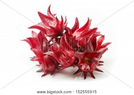 Hibiscus sabdariffa or roselle fruits isolated on white background.
