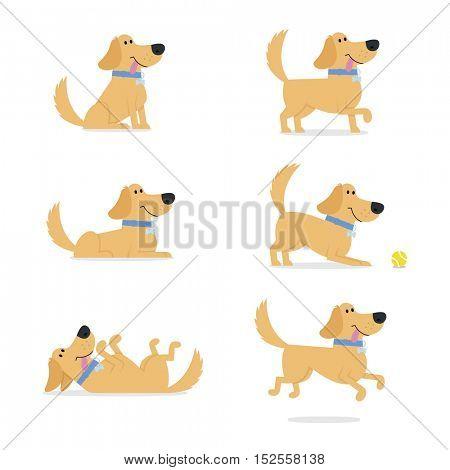 Set Of Dog Poses Vector Illustration