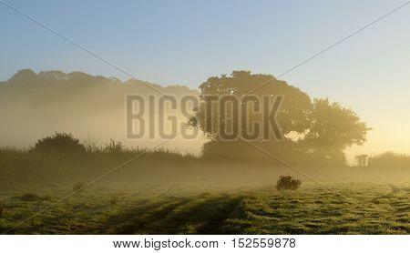 Mist in a morning on a farmland in Devon