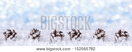 Christmas background with snow and cones. Panoramic image