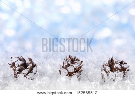 Christmas background with snow and cones
