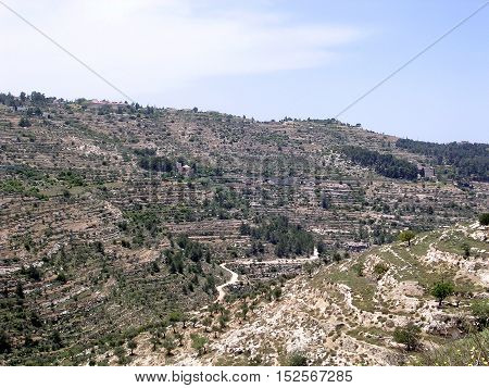 The view of hillsides in Jerusalem Israel May 16 2005