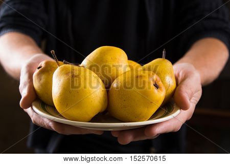 Organic fruit. Healthy food. Fresh pears in farmers hands