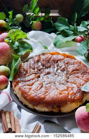 Homemade Apple Tarte Tatin, French Apple pie