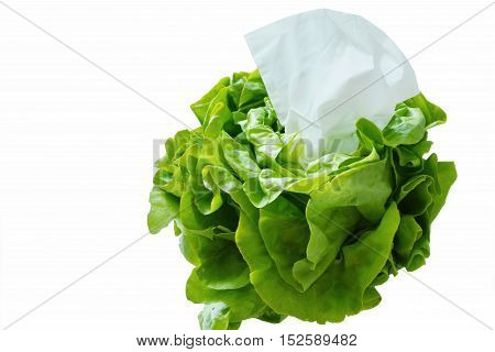 Eating vegetables can prevent colds. Tissues in butter lettuce on white background.