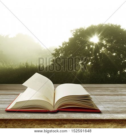 Open book on table in front of forest