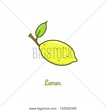 Lemon. Vector illustration isolated on a white background.