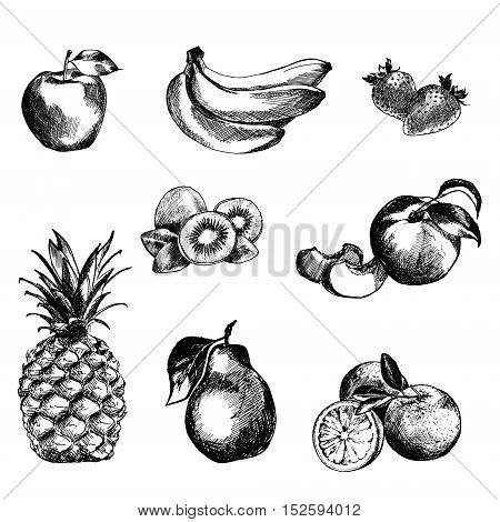 Hand drawn fruits set. Isolated. Black on white background