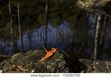 Orange origami crane and water reflections in the wood