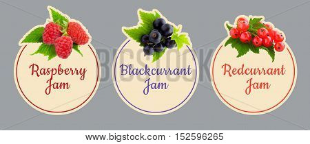 Set of labels for fruit jam. Raspberry, currant Berries icon set.