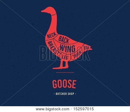 Meat cuts. Diagrams for butcher shop. Scheme of goose. Animal silhouette goose. Vector illustration.