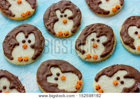Playful polar penguin cookies on a blue background festive baking idea