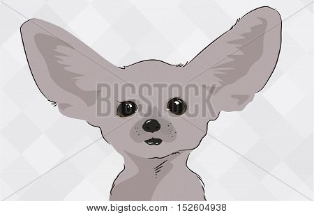 Cute gray cat with big ears and plaintive eyes on a textured background.  Vector illustration.