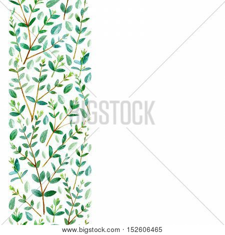 Seamless border from eucalyptus branches.Watercolor hand drawn illustration.White background.