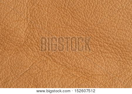 close up leather beige textured or background