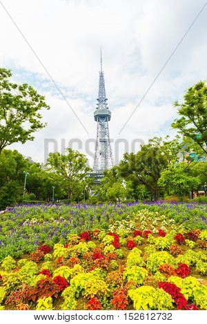 Nagoya Tv Tower Bed Flowers Downtown Park