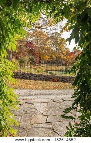 Looking out through trumpet vines on the grounds of Weir Farm National Historic Site.