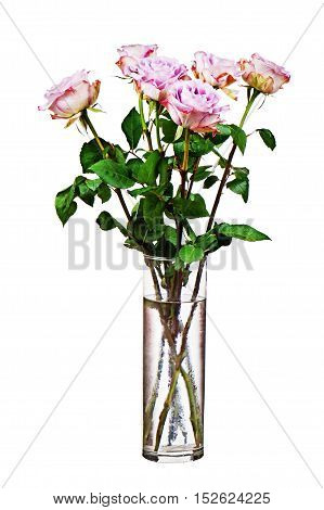 Colorful flower bouquet from roses in glass vase isolated on white background.  Closeup.