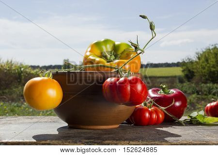 Peppers and tomatoes in clay plates on the old wooden background