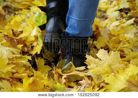 Steps Autumn.
