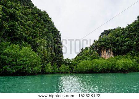 Koh Hong Island Krabi In Thailand Forest In Sea