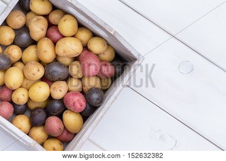 Wooden Box With Multicolored Baby Potatoes