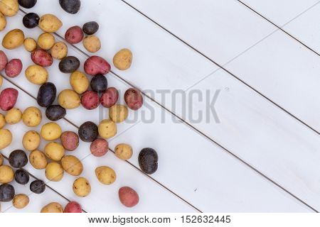 Scattered Fresh Multicolored Baby Potatoes