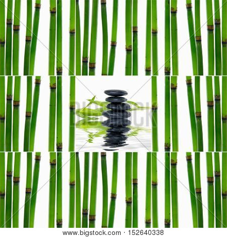 Collage of young bamboo sticks with leaf, stones