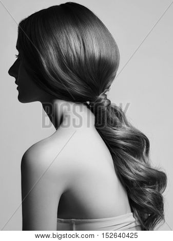 Beautiful Young Woman with Long Healthy and Shiny Smooth Hair. Girl with Hairstyle Low Ponytail, Rear View