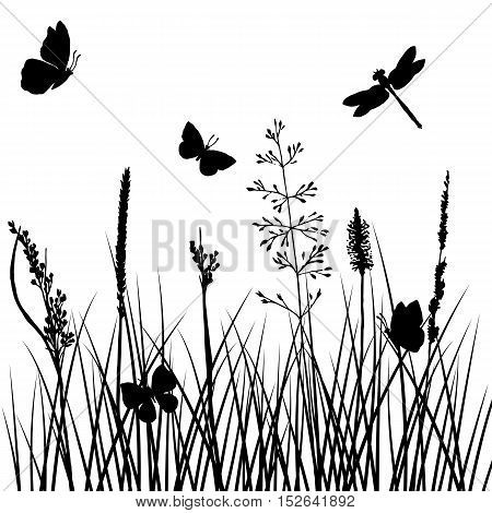 vector silhouettes of grass with butterflies and dragonflies, background with wild plants and insects, herbal backdrop, black monochrome floral template, hand drawn illustration