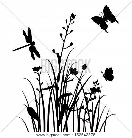 vector silhouettes of flowers and grass with butterflies and dragonfly, background with wild plants and insects, herbal backdrop, black monochrome floral template, hand drawn illustration