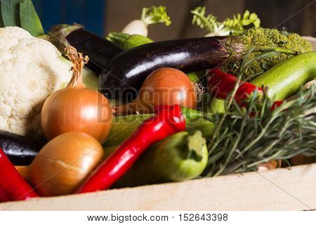 Different kind of local vegitables on the wooden rustic table. Organic healthy food concept