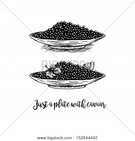 Hand drawn set of plates with black caviar. Retro sketches isolated. Vintage hypster collection. Doodle line graphic design. Black and white drawing plates with black caviar. Vector illustration.