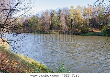 Landscape on a city pond in sunny autumn day