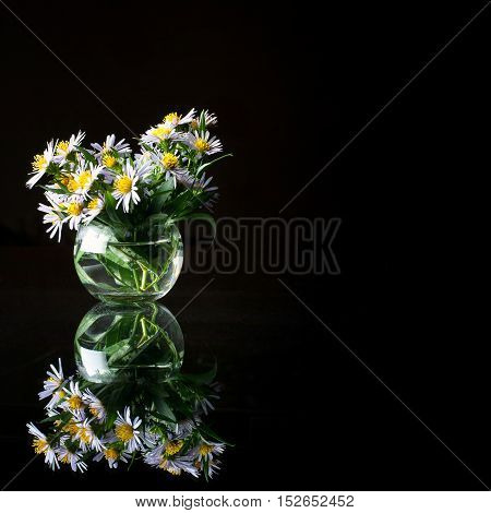Purple asters in a round glass vase. Beautiful floral bouquet and its mirror image on a dark background. Picture for backgrounds and printed materials.