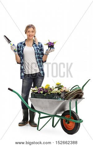 Full length portrait of a female gardener standing behind a wheelbarrow and holding a flower in a pot and a spade isolated on white background