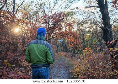 The man controls the drone in the autumn forest. Drone is flying among the trees in the rays of the setting sun.