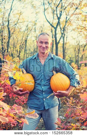 Man with happy face is carrying pumpkins in hands through autumn forest. Toned image.