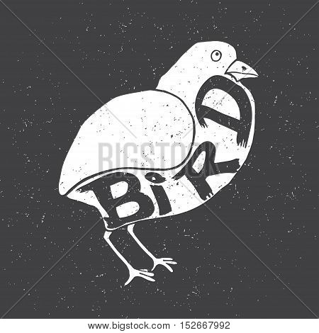 Bird with the inscription on the body. Vector illustration