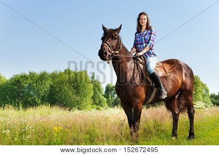 Portrait of female equestrian riding beautiful bay horse in summer, side view