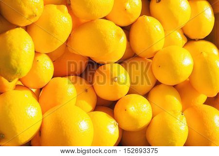 Yellow Lemons Close Up Vibrant Citrus Background.