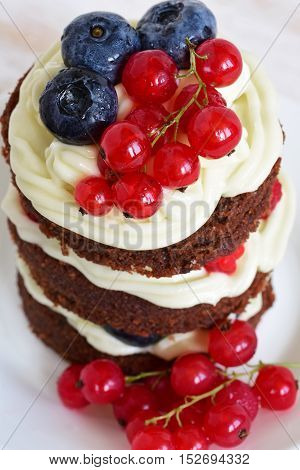 Homemade Cake With Berries