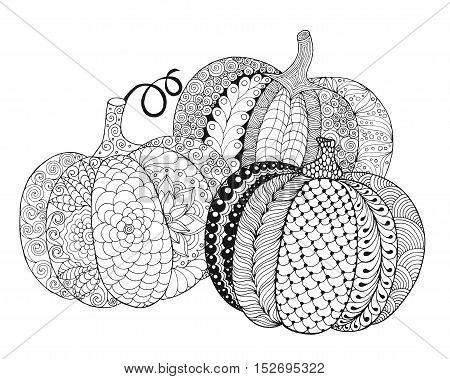 Zentangle stylized pumpkins. Black white hand drawn vector illustration. Traditional symbol of Thanksgiving Halloween autumn. Sketch for colouring page decoration poster print